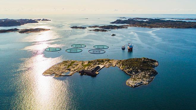 Salmon fish farm. Hordaland, Norway..jpg
