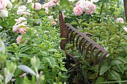 Gartenarbeit.jpg