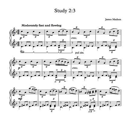 Study 2 3.png