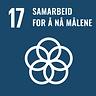 FNs bærekraftsmål 17