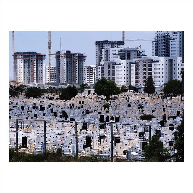 palestine 19.png