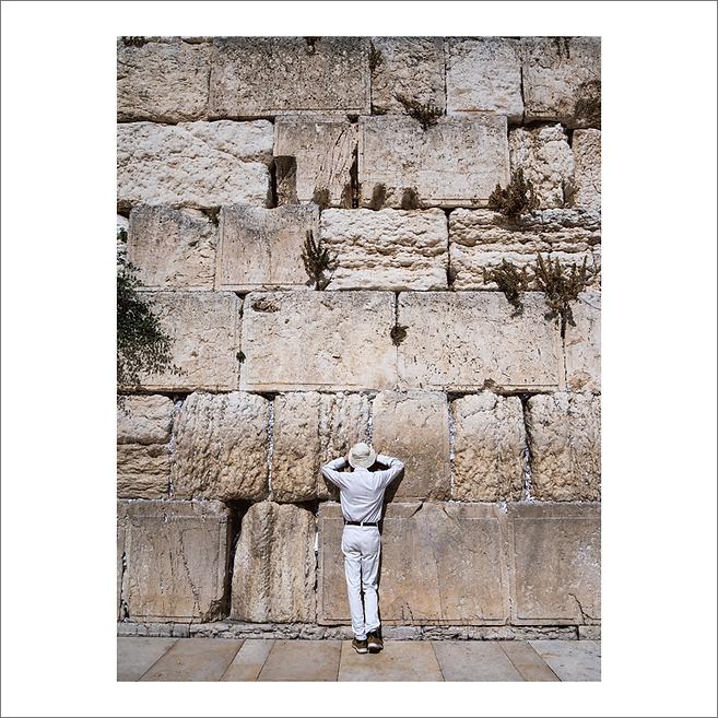 palestine 12.png