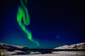 Chasing the northern Lights ~ Tromsø