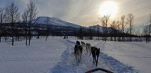 Dog Sledding expedition