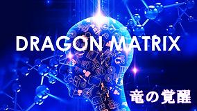 dragonmatrix001.png