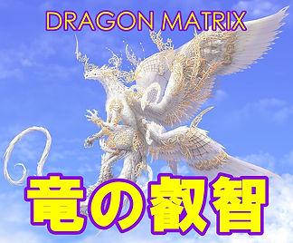 dragonmatrix.JPG