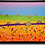 Thumbnail: Fields of Gold (Small 30x40cm)