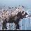 Johnman Spray Paint Graffiti Painting of an Elephant. Spraycan on Canvas One Layer Stencil
