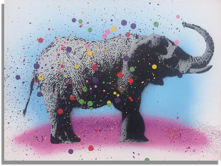 Naughty Elephants Squirt Paint