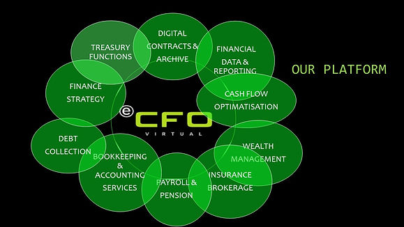 ecfo in english web pages intro.jpg