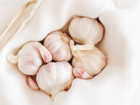 GARLIC HEALTH BENEFITS &  OPTIMAL NUTRIENT ABSORPTION