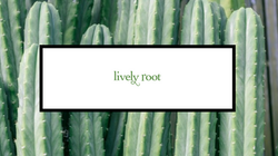 Lively Root