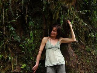 Lassen wir es im Amazonas regnen