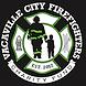 vcfc back logo.png