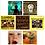 Thumbnail: Full Discography