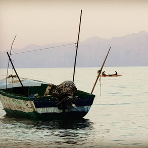 Fishing boat, Red Sea - Sinai Bay