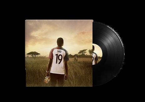 Vinyl Record.png