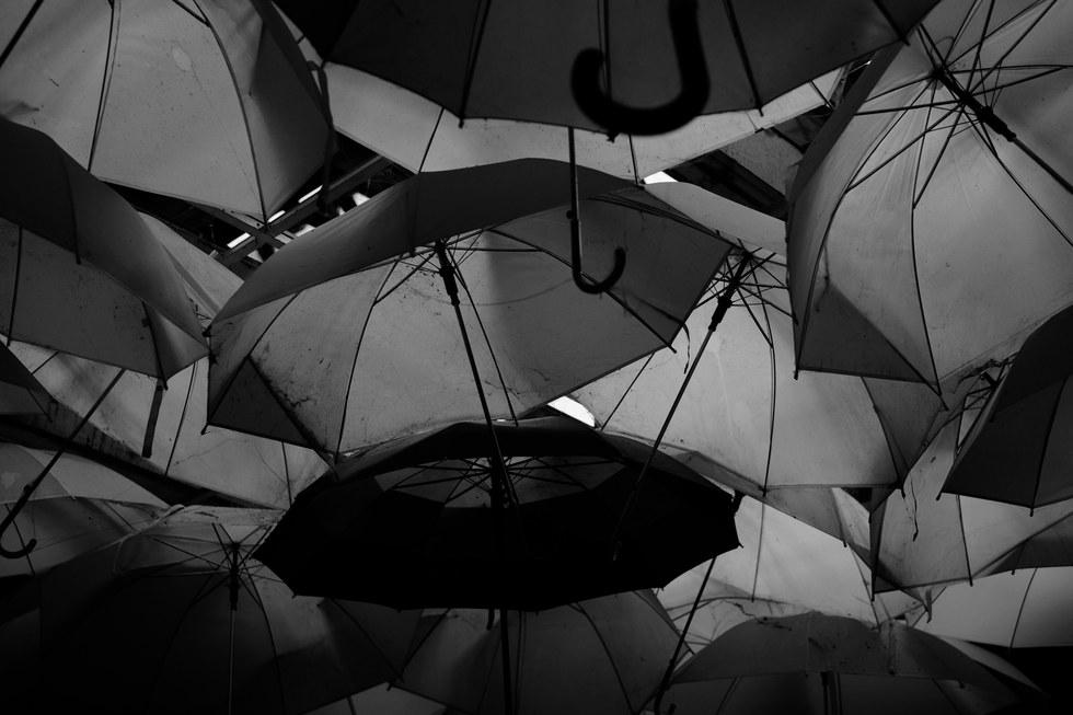 Singing in the Rain #Umbrellas #Sun #Rain