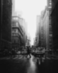 bredfin_background_grey_02.jpg