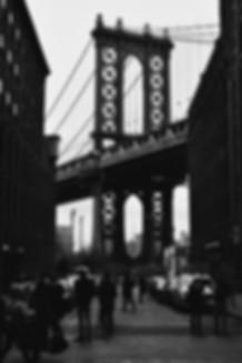 bredfin_background_grey_01.jpg