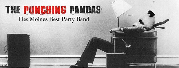 The Punching Pandas.jpg