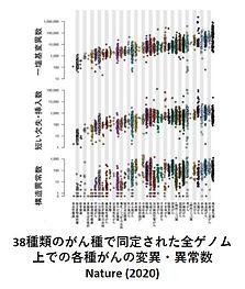 がんゲノムその1.jpg