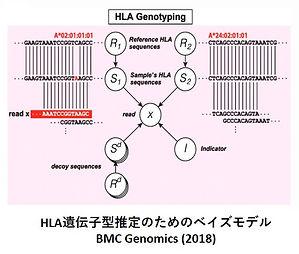 免疫ゲノムその1.jpg