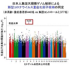 コロナ重症化図_edited.png