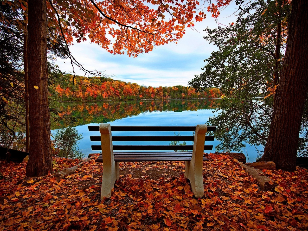 bench-autumn-river-lake-trees