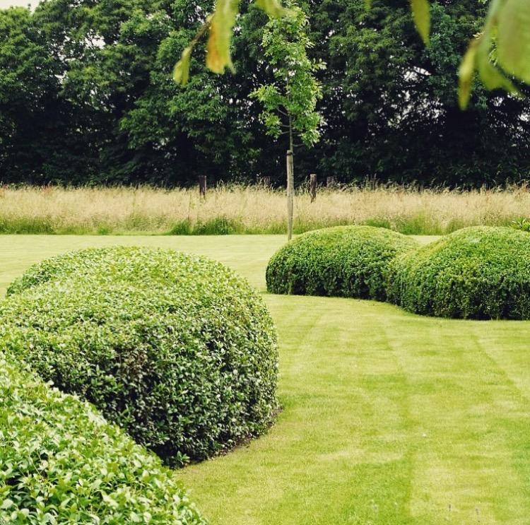ambiances-jardin-francois-piette-architecte-jardin-faimes-liege_3441