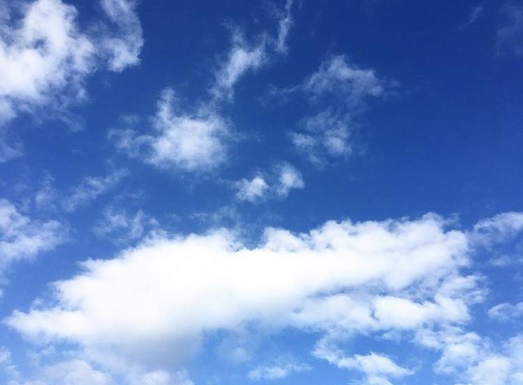 un beu ciel bleu dans les jardins