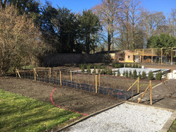 Plantations dans un jardin privé