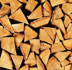 Débitage de bois à Horion-Hozémont