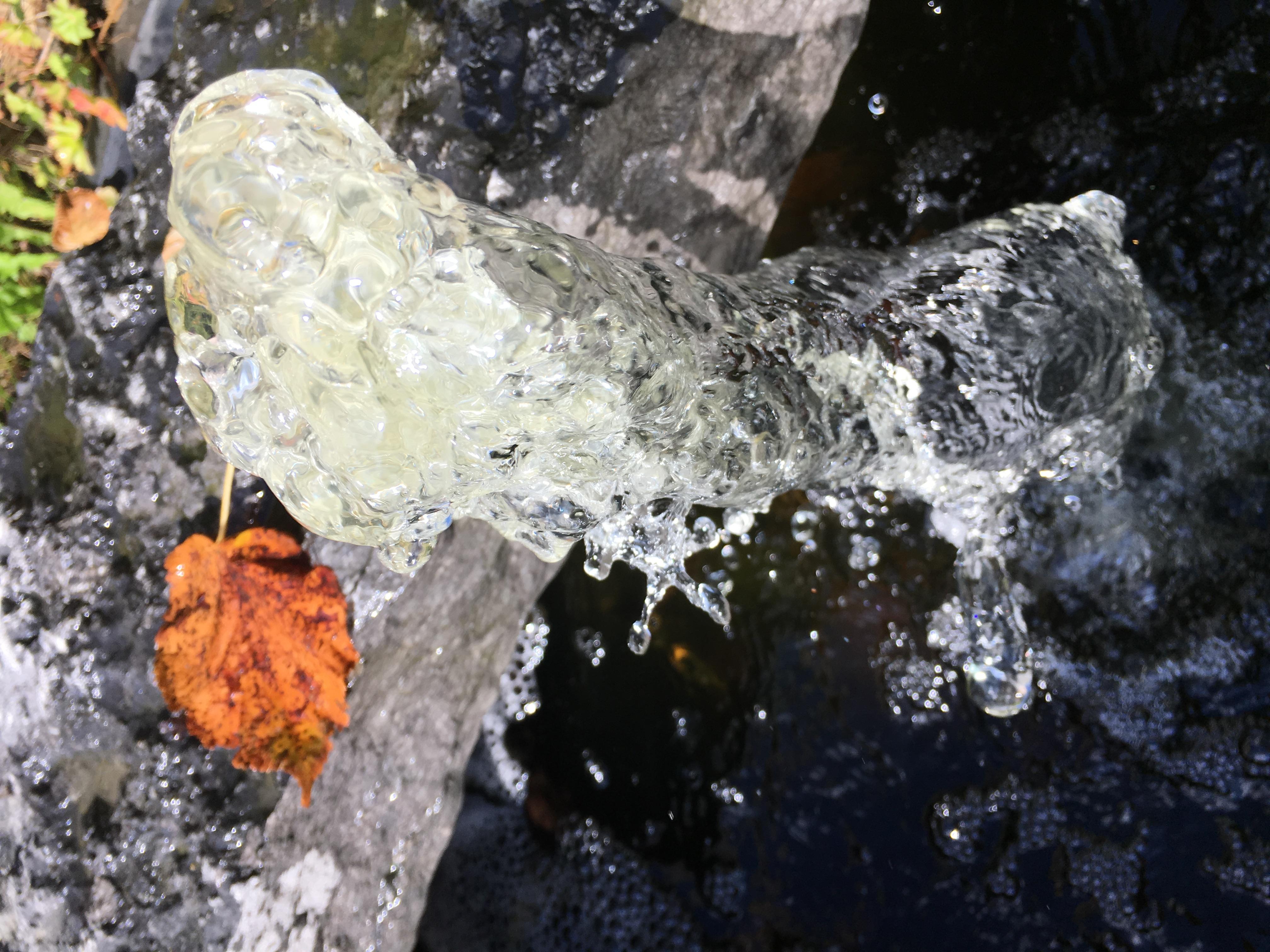 De l'eau dans le jardin