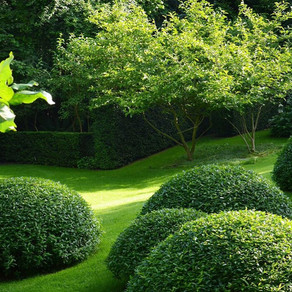La plus value d'un jardin...