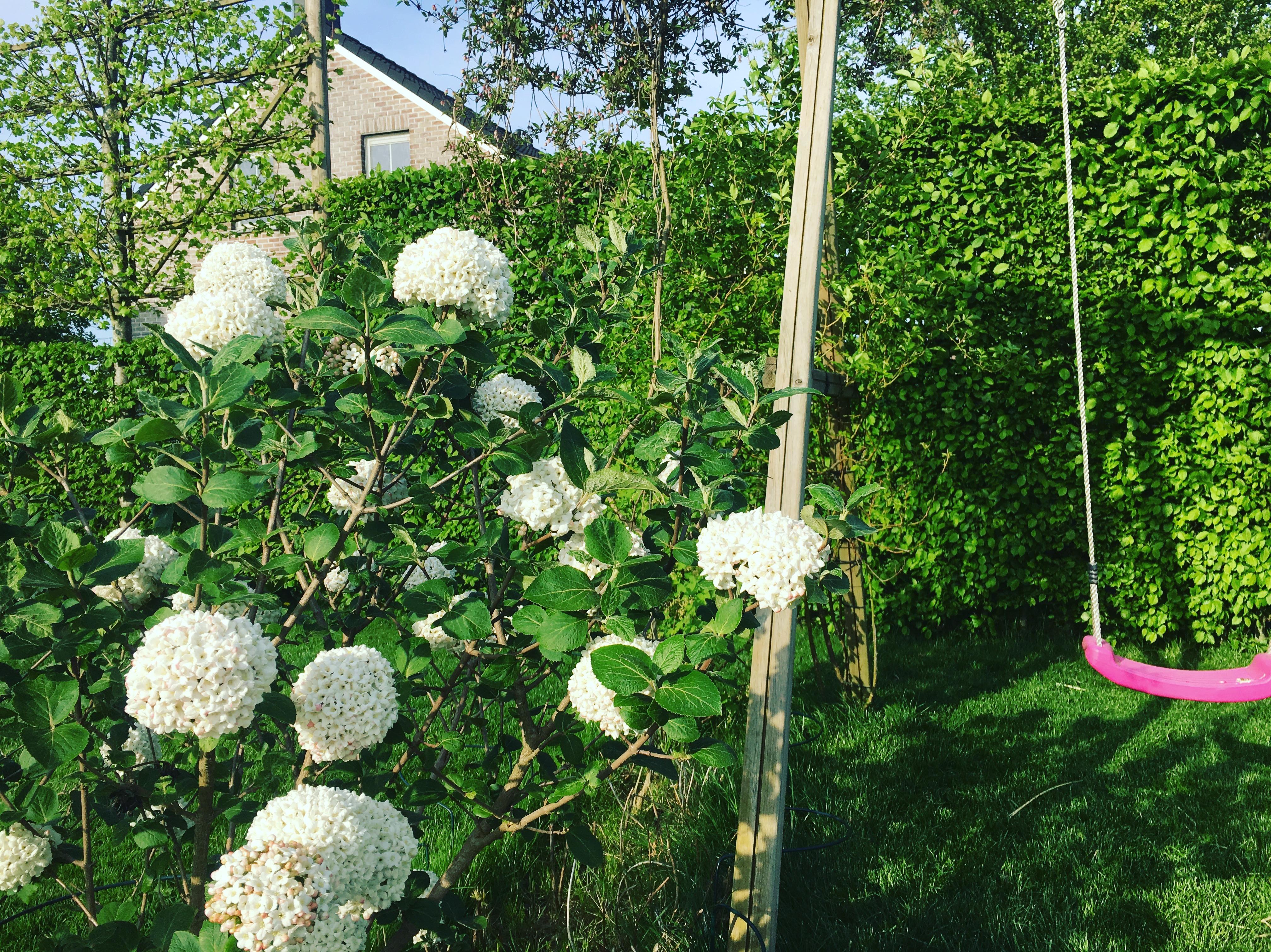 Jardin de l'architecte paysagiste