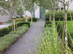 dp-landscaê-studio-entretien-plantation-francois-piette-architecte-de-jardin-waremme