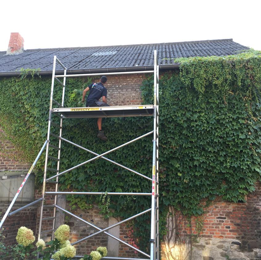 Entretien et maintenance de jardin