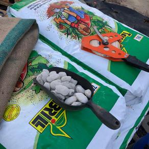 La préparation du sol, c'est indispensable pour la pérennité de vos futures plantations.