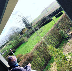 DP Landscape Studio francois piette architecte de jardins jardin en hiver haie et massifs taxus