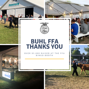 Buhl FFA at county fair. Four images of FFA Bingo stand and Students showing their livestock.
