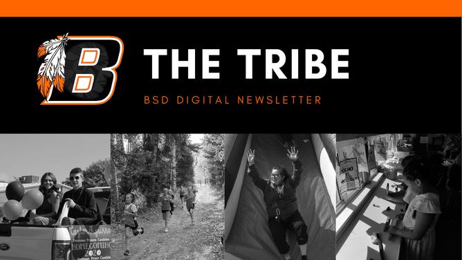 BSD Digital Newsletter   Issue 3
