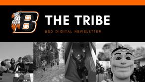 BSD Digital Newsletter | Issue 1