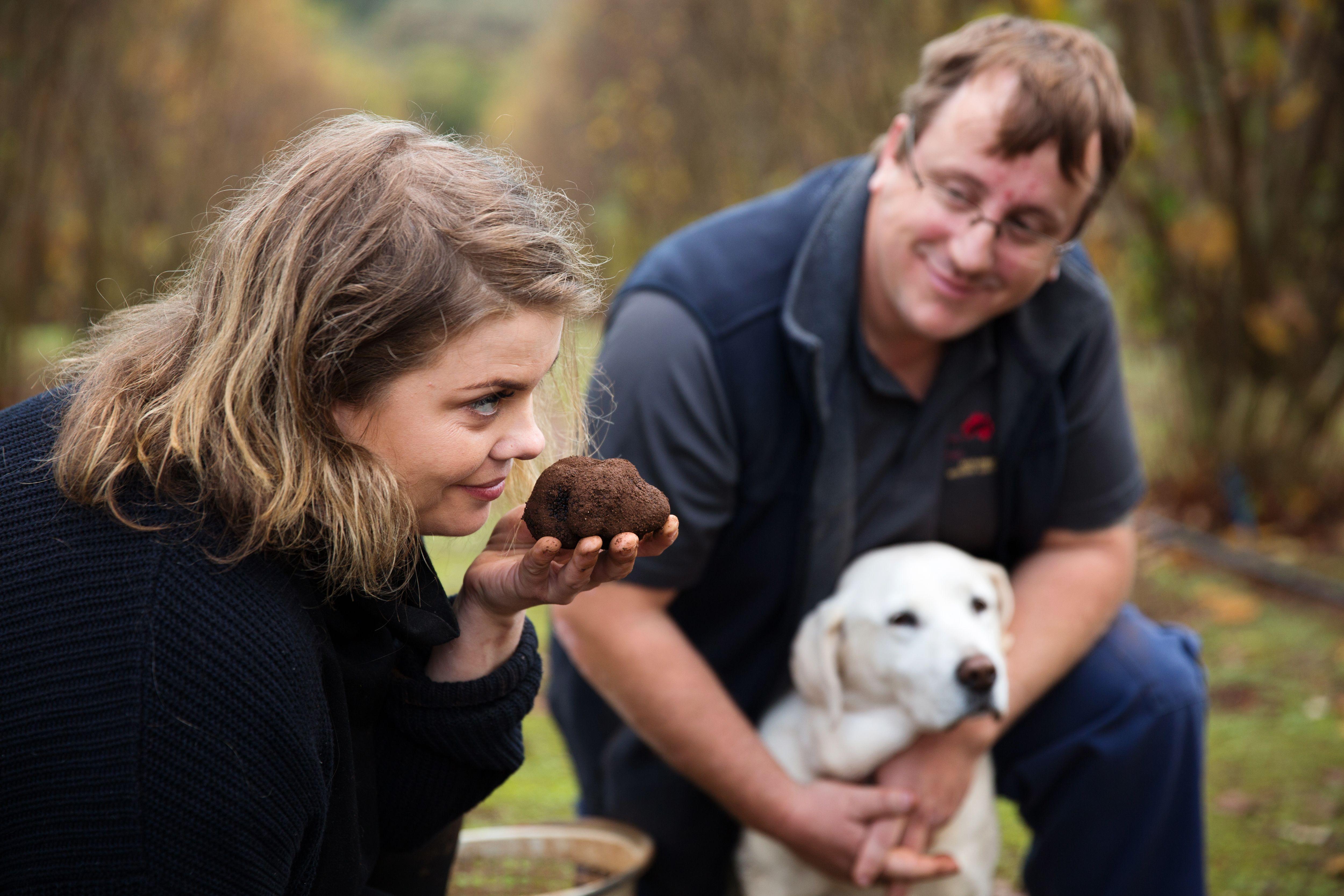 Australian Truffle Traders Truffle Kerfuffle Amy Hamilton