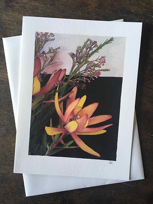 Leucadendron I - pack of 5 gift cards