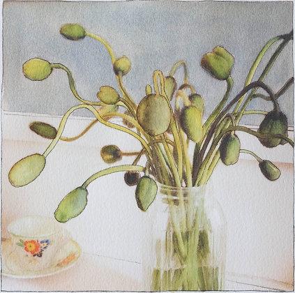 Poppies I - fine art print