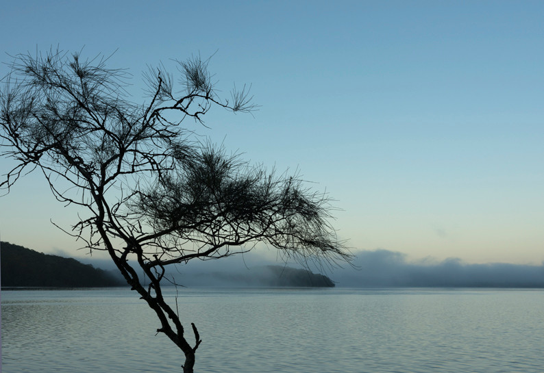 Blue dawn over the lake