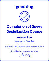 GoodDog Socialization Badge.jpg