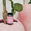 Thumbnail: Beauty Bear vitamines