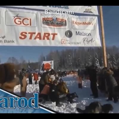 2018 Iditarod Race No.3
